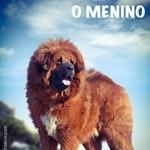 """Lançamento do livro """"A Montanha, o Cachorro e o Menino"""""""